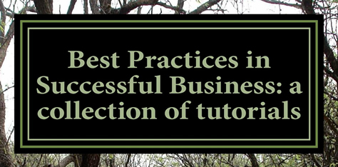 New Book Launch: Best Practices in Successful Business
